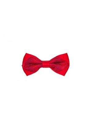 Бабочка красная двойная